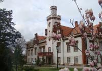 Schloss Dub